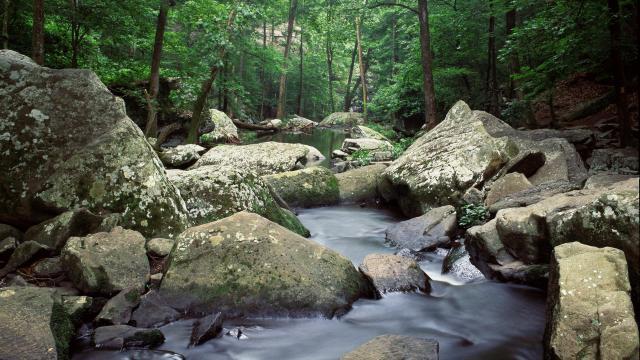 Cedar creek arkansas